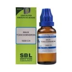 SBL Rhus Toxicodendron Dilution 1000CH 30ml